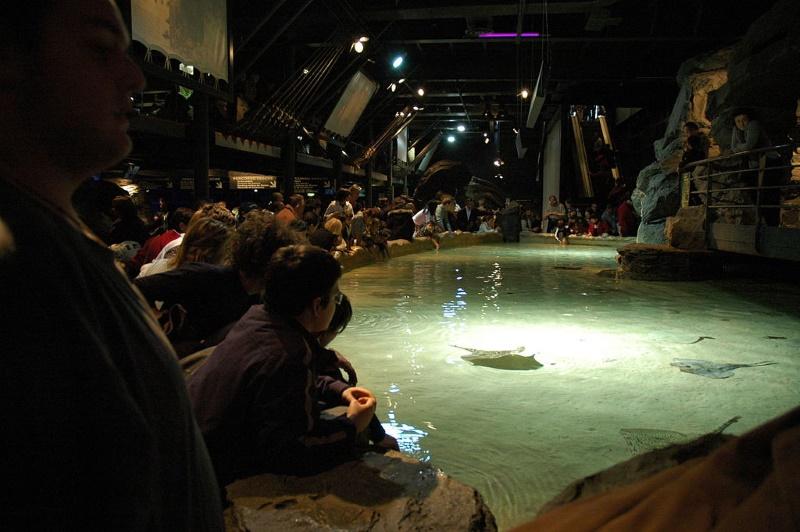 aquarium genua2