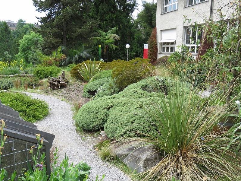 botanische tuin bern